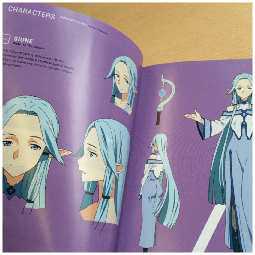 Some character art and information inside the book.