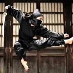 MAOTM-Ninjutsu-Kung-Fu-Kingdom-770x472