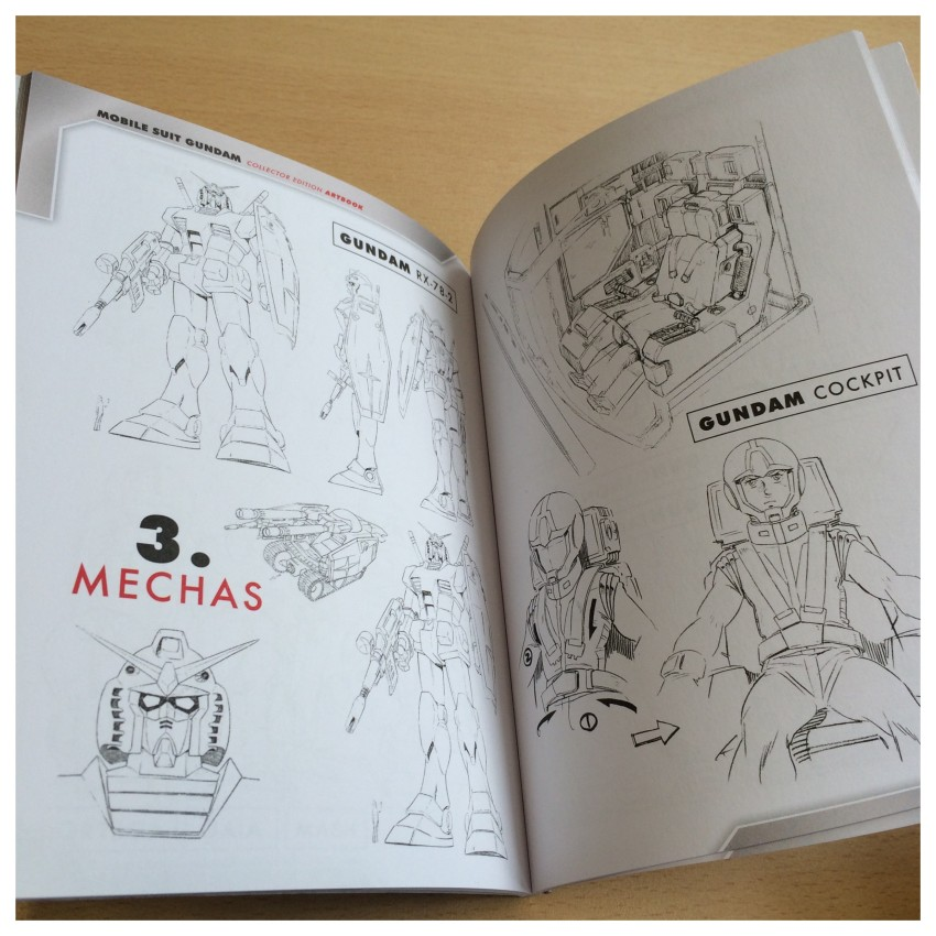 Section 3: Mechas