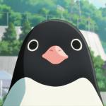 penguin highway_500x500
