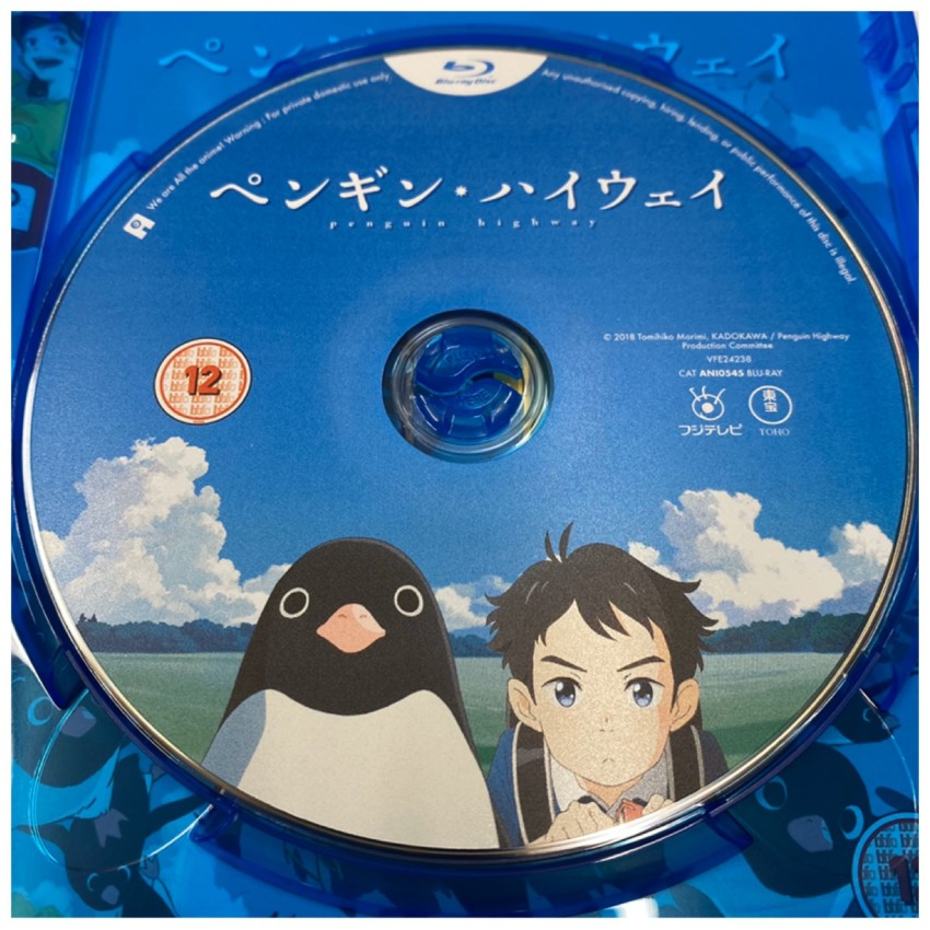 A closer look at the disc included with the standard Blu-ray