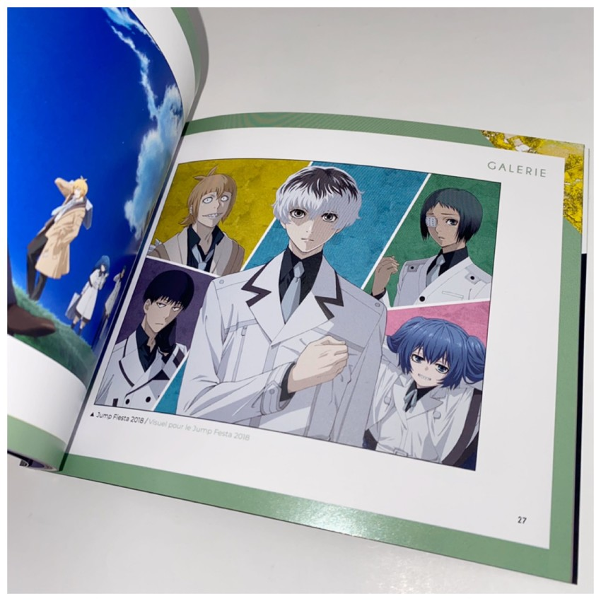 There's also a gallery section showing you some promotional art used in various publications and events in Japan.