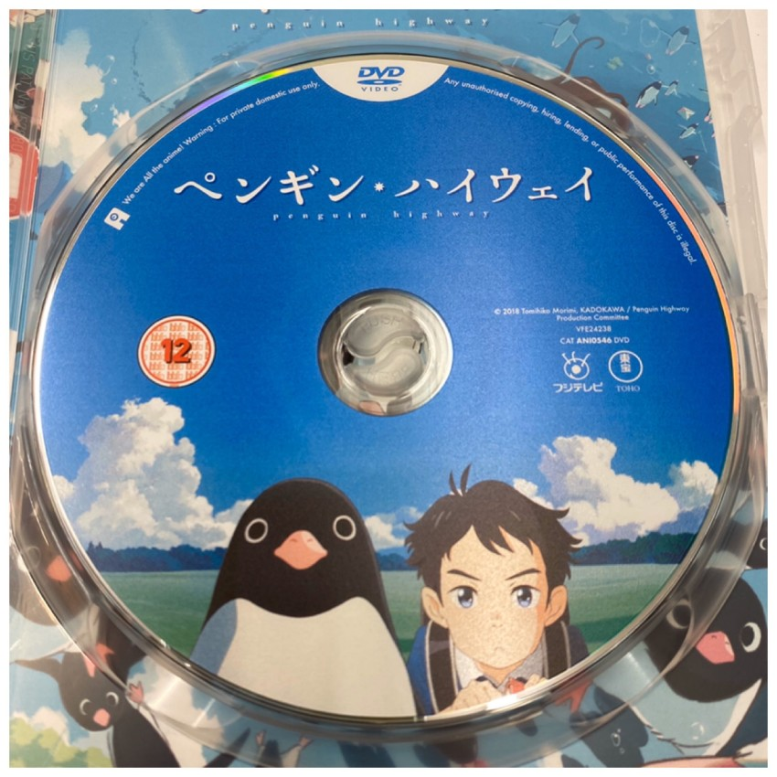 A closer look at the disc included with the standard DVD.